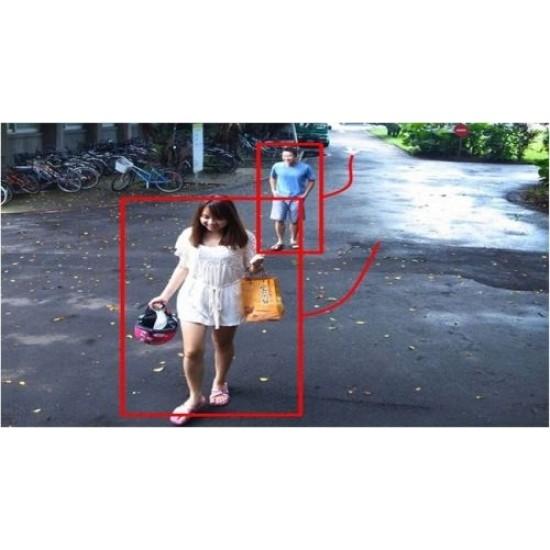 NUUO Surveillance IVS licencija, 1 kanalui
