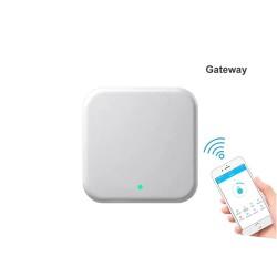 Wi-Fi&Bluetooth valdiklis spynoms iNOVO