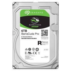 6TB kietasis diskas